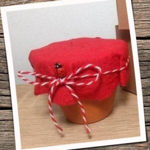 Martisor kit plantabil rosu