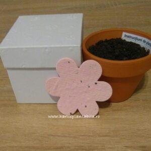 Kit plantabil cu floare